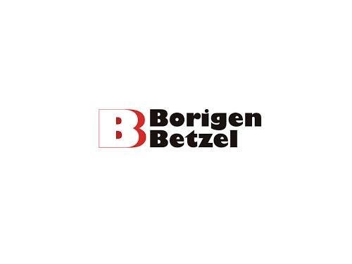 Logo BORIGEN BETZEL S.R.L.